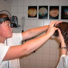 2. Undersøkelse av netthinnen ved hjelp av indirekte oftalmoskopi